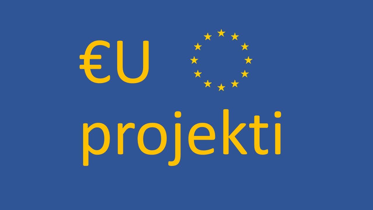 EU projekti, strateški dokumenti  i nova financijska perspektiva 2021. - 2027. - ONLINE