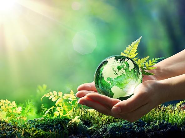Zelena javna nabava i kriteriji za odabir ENP za očuvanje okoliša, Javna nabava u EU projektima i i fnancijske korekcije, Upravljanje ugovorima - WEBINAR 8 bodova